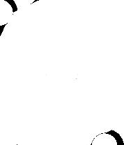 SCINTIGRAPHIE